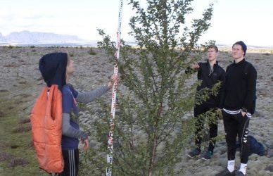 Ferð á Skeiðarársand