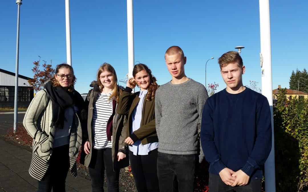 Ráðstefna ungmennaráða á Suðurlandi
