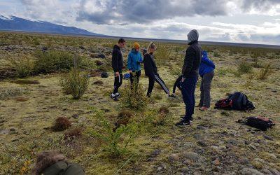 Gróðurreitir FAS á Skeiðarársandi
