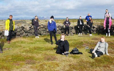 Birkiskógurinn á Skeiðarársandi